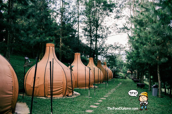 Glamour-Camping-di-Bandung---The-Lodge-Maribaya---Review