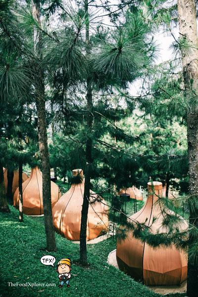 Glamping-Kekinian---The-Lodge-Maribaya---Bandung