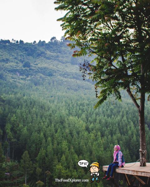 Sky-Tree---The-Lodge-Maribaya---Foto-di-ketinggian-Bandung