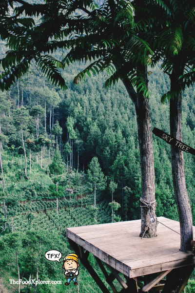Sky-Tree---The-Lodge-Maribaya---Lembang---Bandung-Wisata