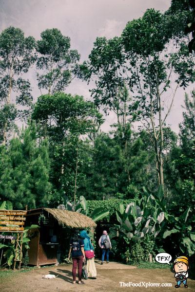 Tempat-Kekinian-di-Bandung---The-Lodge-Maribaya---Lembang