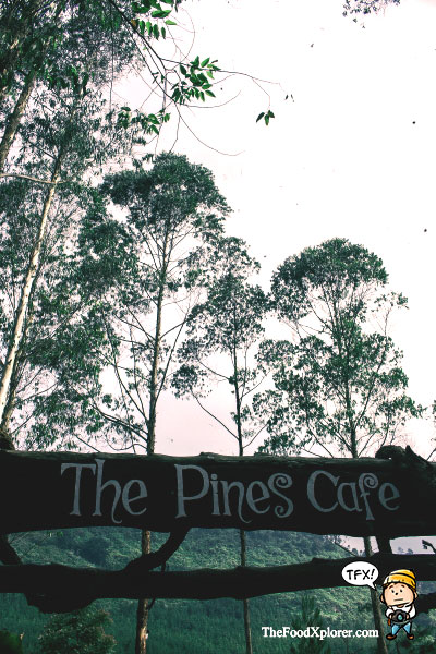The-Pines-Cafe---Bandung