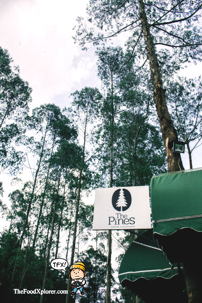 The-Pines-Cafe-Bandung