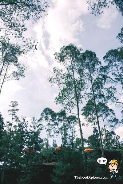 Villa-The-Lodge-Maribaya---Bandung